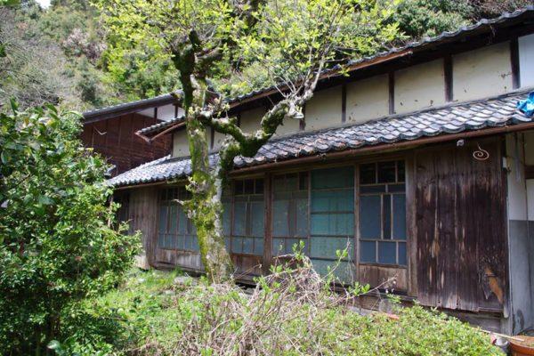古民家ゲストハウス 竹小舞を編んで土壁を塗ろう!