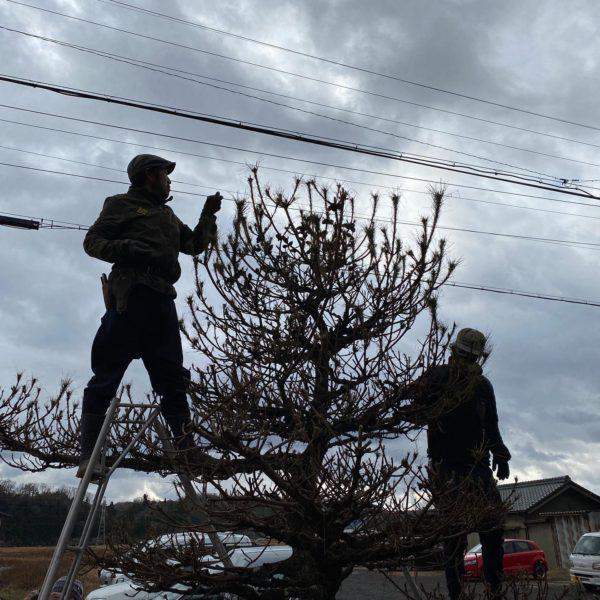 美濃加茂市で「庭づくりWS」